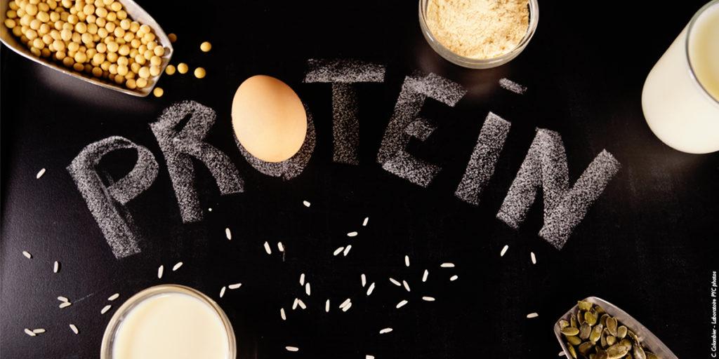 protéine; protein